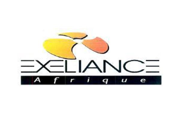 Exeliance-Afrique